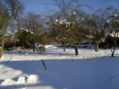 Beeley In The Snow_1